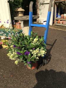 We also have lovely plants and garden ornaments for sale